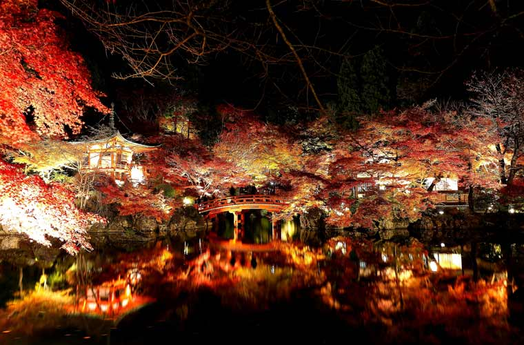 醍醐山全体が寺域となっており、国宝の金堂、五重塔をはじめ、荘厳な堂宇が建ち並びます。弁天堂付近が紅葉スポットの一つ。ライトアップも行われており、水面に映る