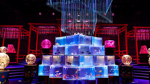 夏の風物詩「アートアクアリウム」が大型常設展に。3万匹以上の金魚が織りなす新感覚美術館