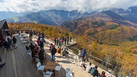長野県白馬岩岳エリアが「第6回美し国づくり大賞」を受賞! 北アルプスの絶景を堪能できるリゾートに熱い視線