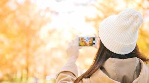秋のお出かけにおすすめ!紅葉名所や行楽スポット、温泉、ハロウィン情報も!