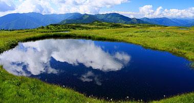 苗場山 山頂湿原