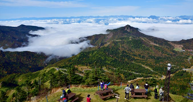 横手山からの雲海