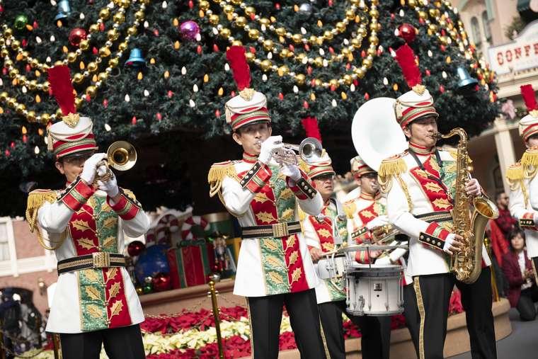 東京ディズニーランド ディズニークリスマス  ツリー