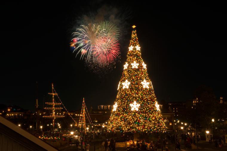 「スターブライト・クリスマス」