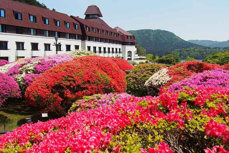 小田急 山のホテル庭園のつつじ