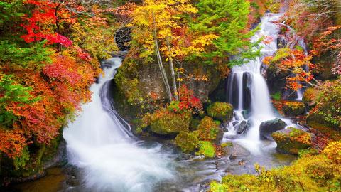 関東の滝16選!日本三名瀑や紅葉名所もご紹介