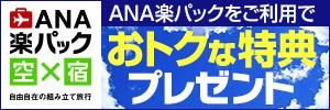 ANA旅行券10万円当たる!