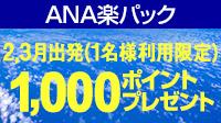 ANA楽パック限定!3/4(月)10時まで!