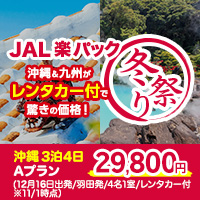 【JAL楽パック】冬祭り