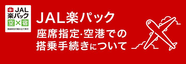 JAL楽パック座席指定・空港での搭乗手続きについて