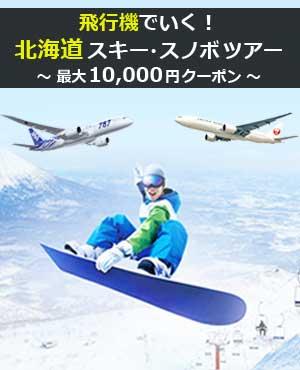 飛行機で行くスキー・スノボツアー