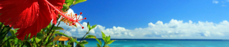 沖縄離島(石垣島・宮古島)旅行・ツアー 【楽天トラベル】沖縄 青い海と青い空と赤いハイビスカス