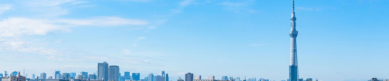 首都圏旅行・ツアー(航空券+ホテル)【楽天トラベル】