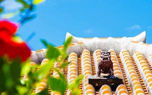 沖縄旅行・ツアー(航空券+ホテル)【楽天トラベル】 11月からでも楽しめる沖縄旅行の過ごし方
