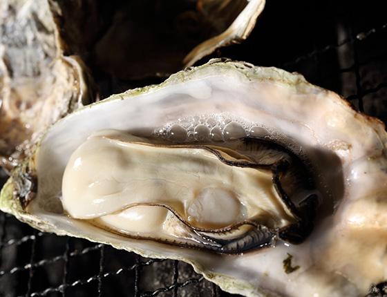 厚岸産 牡蠣の網焼き