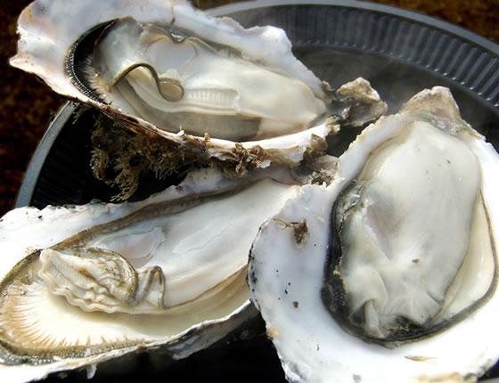 松島の焼き牡蠣
