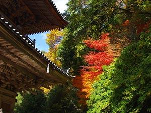 清水寺(島根県)