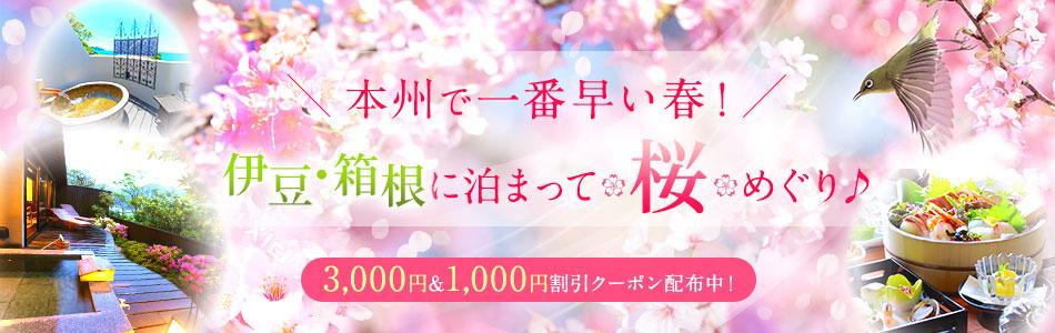 本州で一番早い春! 伊豆・箱根に泊まって桜・梅めぐり♪