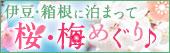 早春を満喫!桜・梅めぐり特集