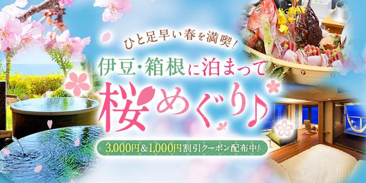 ひと足早い春を満喫!伊豆・箱根に泊まって桜・梅めぐり