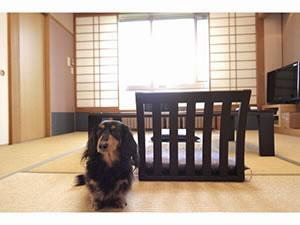 強羅温泉 ペットと泊まる宿 Dog's Rest Place
