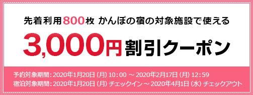 先着利用800枚ご予約限定、特集3,000円割引クーポン