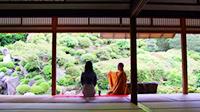 新緑の古都へ!京都・滋賀・奈良