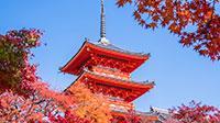 古都を訪ねる魅惑の秋旅
