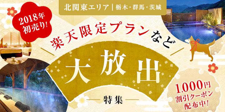 北関東エリア 楽天限定プランなど大放出!1,000円クーポン配布中