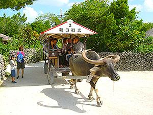 竹富島(石垣市)