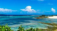 沖縄の夏到来!お得に予約♪