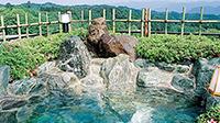 【北関東】初夏のおススメ宿♪