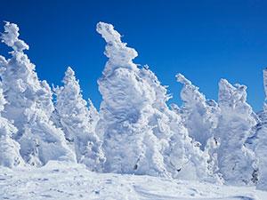 八甲田山の樹氷と八甲田ロープウェー
