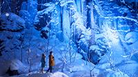 東北の雪と氷の絶景露天風呂