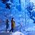 写真 〜星野リゾートで出会う〜雪と氷の絶景露天風呂♪