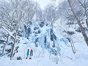 奥入瀬渓流の氷瀑