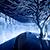 写真 星野リゾートで出会う 雪と氷の絶景露天風呂