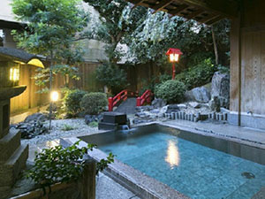 三谷温泉 平野屋