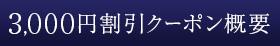 3,000円割引クーポン概要