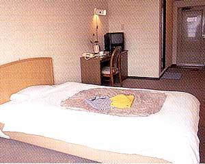 ホテル オクウチ オオサカの客室の写真
