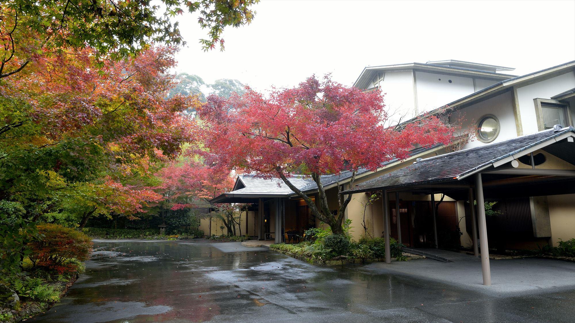 関東圏内で夫婦旅行に最適な場所を教えてください
