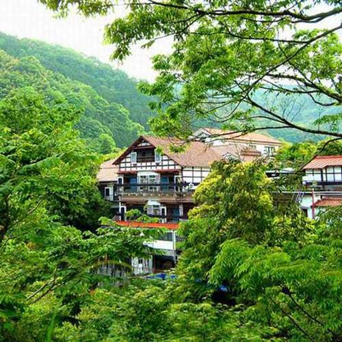 天城湯ヶ島温泉 白壁荘 (巨石と巨木の露天風呂が自慢の宿)...