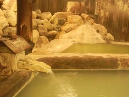 塩原元湯温泉 ゑびすや 画像