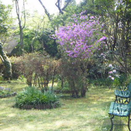 ペンション花の木