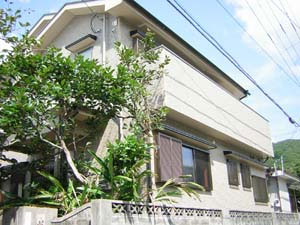 あまみユースホステル <奄美大島>の施設画像