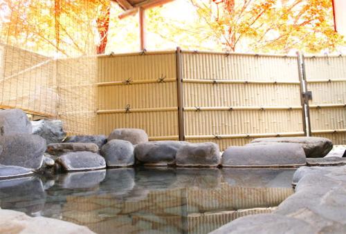 猿ヶ京温泉 ル・ヴァンベール 湖郷(こきょう) 画像