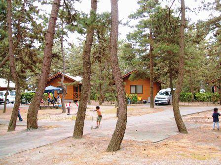 北条オートキャンプ場 画像