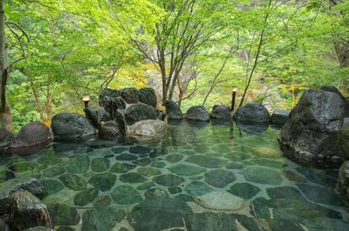 湯西川温泉 ホテル湯西川 画像