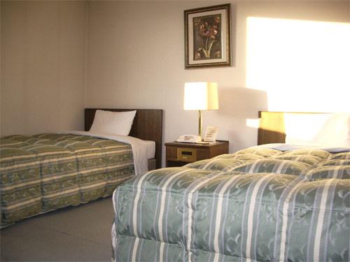 ホテルルートイン飯田の客室の写真