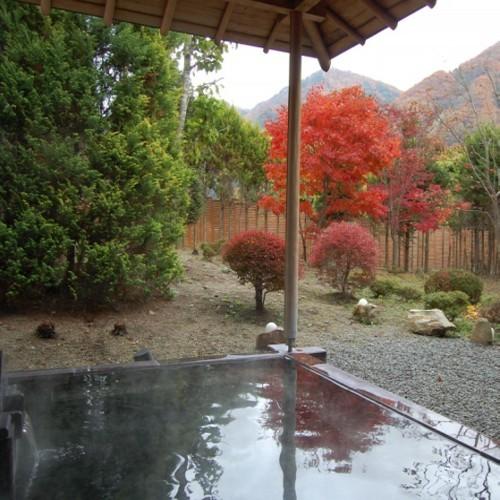 老神温泉 源泉湯の宿 紫翠亭 画像